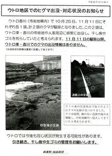 ヒグマチラシ001.jpg
