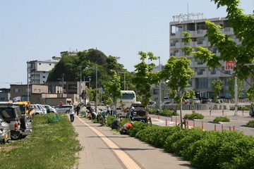 花植え2010